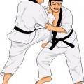 Tournoi de Judo-Jitsu