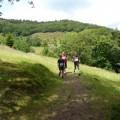 Course à pied Foulées du Bruckenwald