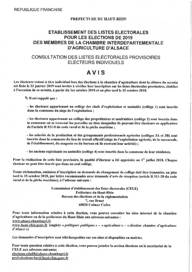 AFFICHE AVIS consultation listes electorales-page-001